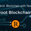 ROOT BLOCKCHAIN: The First Hybrid Blockchain with Flexible Option (Blockchain as a Service)