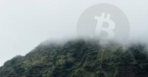 """Crypto VC Believes the Masses Have """"Forgotten"""" About Bitcoin a Year After All-Time Highs"""