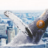 Tokyo Whale Prepares 8,000 BTC Dump as Crypto Bloodbath Continues