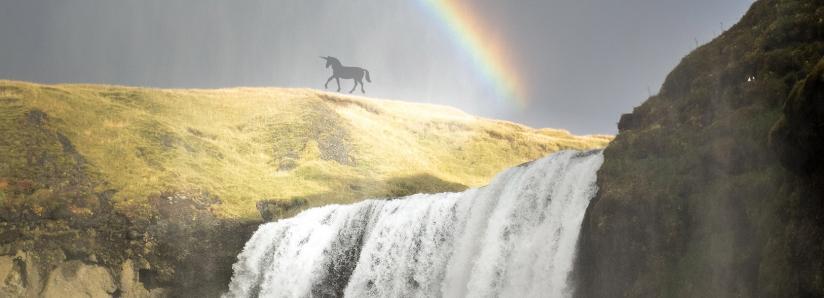Crypto Unicorn Hunters: The VC Firms Behind Billion-Dollar Crypto Startups
