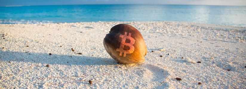 Humor: Bitcoin SODLers Now Can Easily Sell the 'Bottom' with PayPal