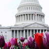 Congressmen Introduce Bill to Change Securities Definition to Exclude Cryptocurrency