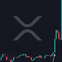 Did Insiders Trade XRP Before the Coinbase Listing?