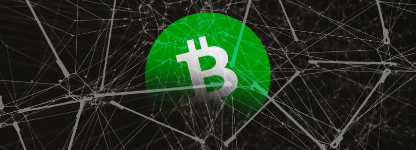 Bitcoin Cash blocks tagged with