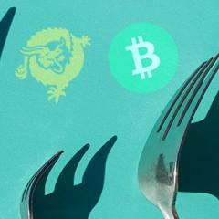 BTC forks post astronomical 24 hour gains, Bitcoin Cash up 60%, Bitcoin SV jumps 40%