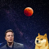 Dogecoin surges 68% in past week, Elon Musk jokes about it on Twitter