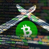 Bitcoin Cash exploit cripples network during scheduled hardfork upgrade