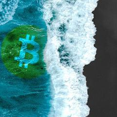 As bitcoin smashes past $8,000 retail interest begins surging, new momentum?