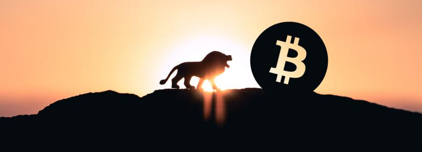 Analyzing Bitcoin's historical dominance over the crypto market, will BTC continue to dominate?