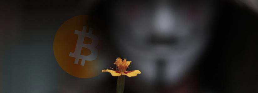 Alleged Bitcoin Ponzi scheme Plus Token could be liquidating billions of dollars in stolen crypto, says VC