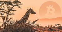 Google search trend shows Bitcoin most popular in Africa