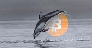 Investor says Bitcoin price could drop to $6k based on GBTC premium