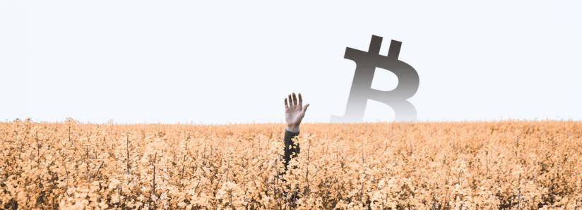 Coin Metrics report: More than 1.6 million Bitcoins are lost forever