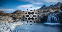 Cardano's Shelley testnet has ten times more staking pools than EOS and Tron