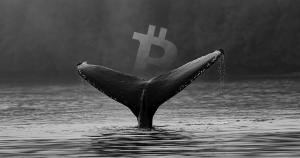 A big Bitfinex Bitcoin whale is anticipating a severe correction, will he be right?