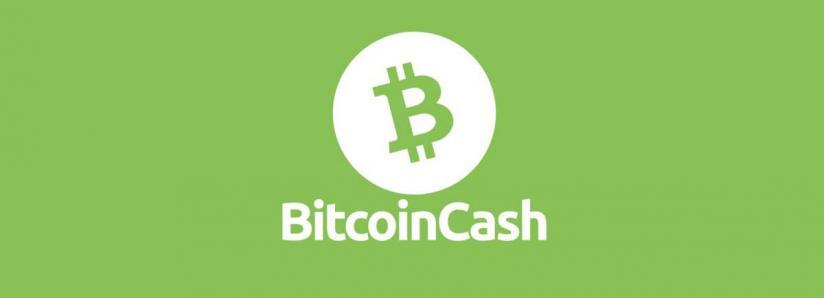 bch altcoin trader