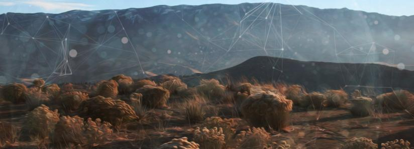 Mysterious Blockchain Company Buys Enough Land in Nevada to Build a City