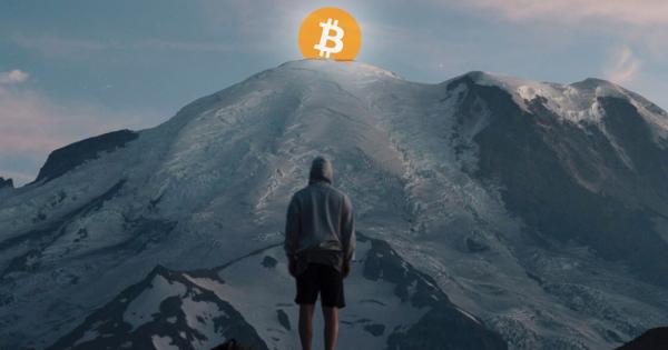 """Cryptocurrency Bloodbath Continues as """"Monster Rally"""" Looms on Horizon"""