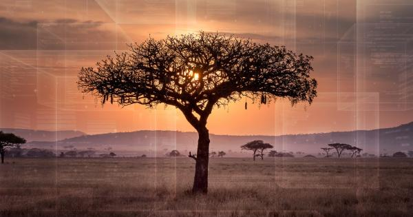 Blockchain Is Transforming the Digital Landscape of Africa