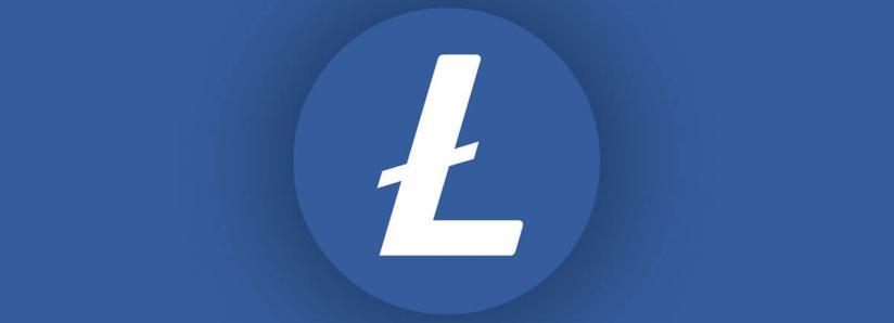 eToro CEO Says Correction is Healthy, Platform Bets on Litecoin