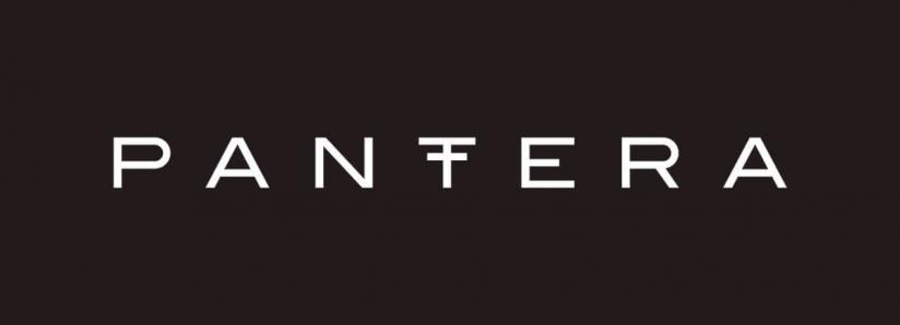Pantera Capital CEO Dan Morehead Talks Bitcoin and Blockchain