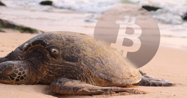 Bitcoin dips below $10,000 as it prepares for next major move