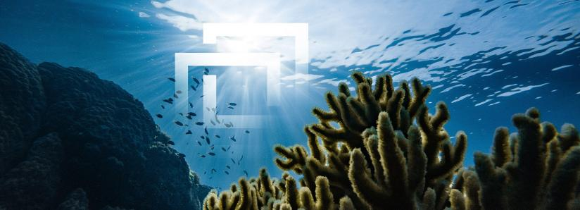 Ocean Protocol announces initial exchange offering (IEO) with Bittrex, but some traders are not happy