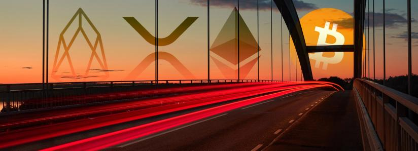 Altcoins post double-digit gains as bitcoin accelerates past $7,000