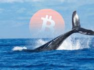 Massive Bitcoin whale moves more than $1.3 billion worth of BTC