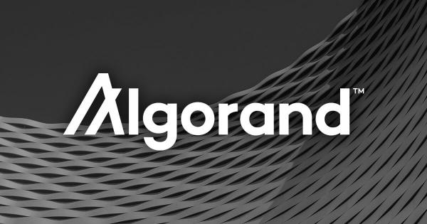A new venture studio is aiming to foster the development of the Algorand ecosystem