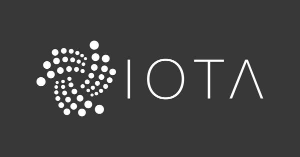 Leaked Transcript Uncovers Fallout Between IOTA Leaders