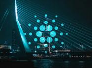 New faces at the Cardano foundation highlight the need for general strategy