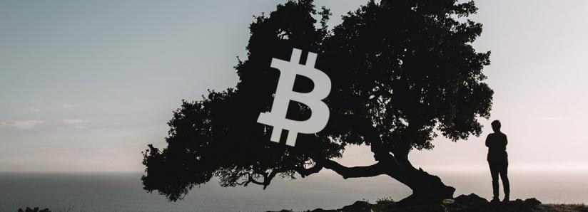Bitcoin continues retracing; is the bull market over?