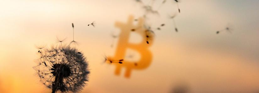 What's holding Bitcoin back – business or consumers?