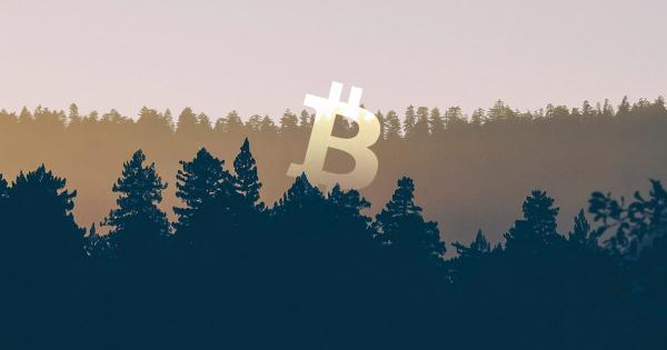Bitcoin isn't out of the woods yet despite Friday's stock market rally