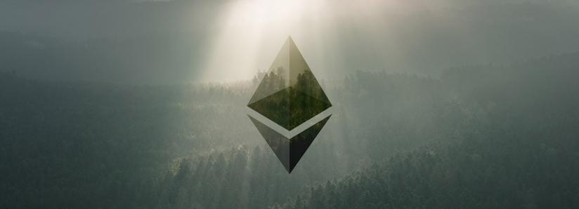 Here's why data regarding Ethereum's investor composition may be extremely bullish