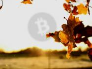 """Analyst """"surprised"""" Bitcoin Cash has escaped an attack after 30% hash rate drop, but BCH proponent hits back"""