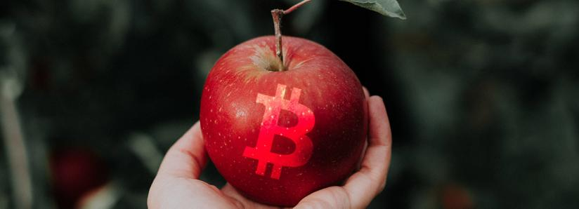 """Jack Dorsey: Bitcoin is the """"best manifestation"""" of a native digital currency"""