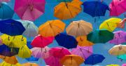 Investors pinpoint DeFi insurance as the next big thing—YFI keeps surging