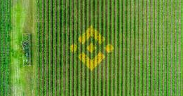 Binance Chain is getting its own DeFi yield farms after Ethereum