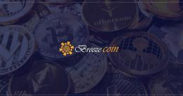 Introduction to Breezecoin: the blockchain project looking to combine real estate assets with crypto