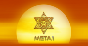 META 1 Coin Trust Announces Commission to Study Global Persecution of Cryptocurrency Projects