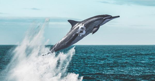 Market data indicates OKEx whales are expecting Bitcoin to spike past $14k