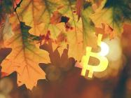 Bitcoin ETP volumes grew in October amidst institutional demand