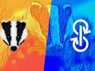 Bitcoin-focused DeFi protocol Badger joins hands with Yearn.finance (YFI)