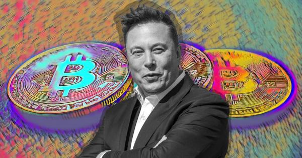 "Elon Musk says only a ""fool"" wouldn't look into Bitcoin"