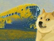 "Dogecoin ""supporters"" turn on DOGE as Reddit-fueled craze ends with 50% correction"