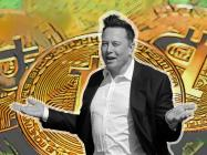 SkyBridge Capital CEO says Elon Musk owns over $5 billion in Bitcoin through Tesla and SpaceX