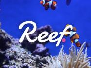 Suspicions raised as Alameda Research denies affiliation with Reef Finance