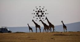 Cardano Africa Special reveals second major partnership, this time with Tanzania